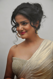 Vishakha Singh at rowdy fellow audio 044.jpg