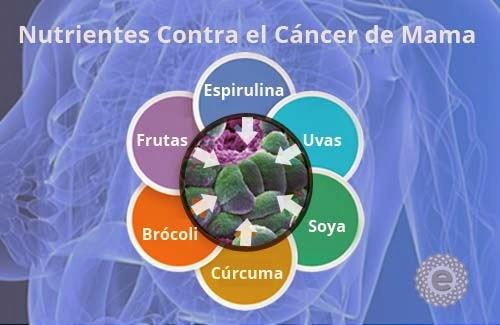 C ctel de vegetales efectivo en la lucha contra el c ncer de mama entreveo - Alimentos contra el cancer de mama ...