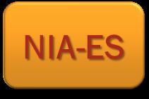 NORMAS INTERNACIONALES DE AUDITORÍA NIA-ES