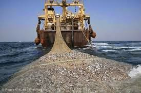 http://www.dorsetecho.co.uk/letters/letters/11608158.Fisheries_Policy_detrimental_to_our_environment/