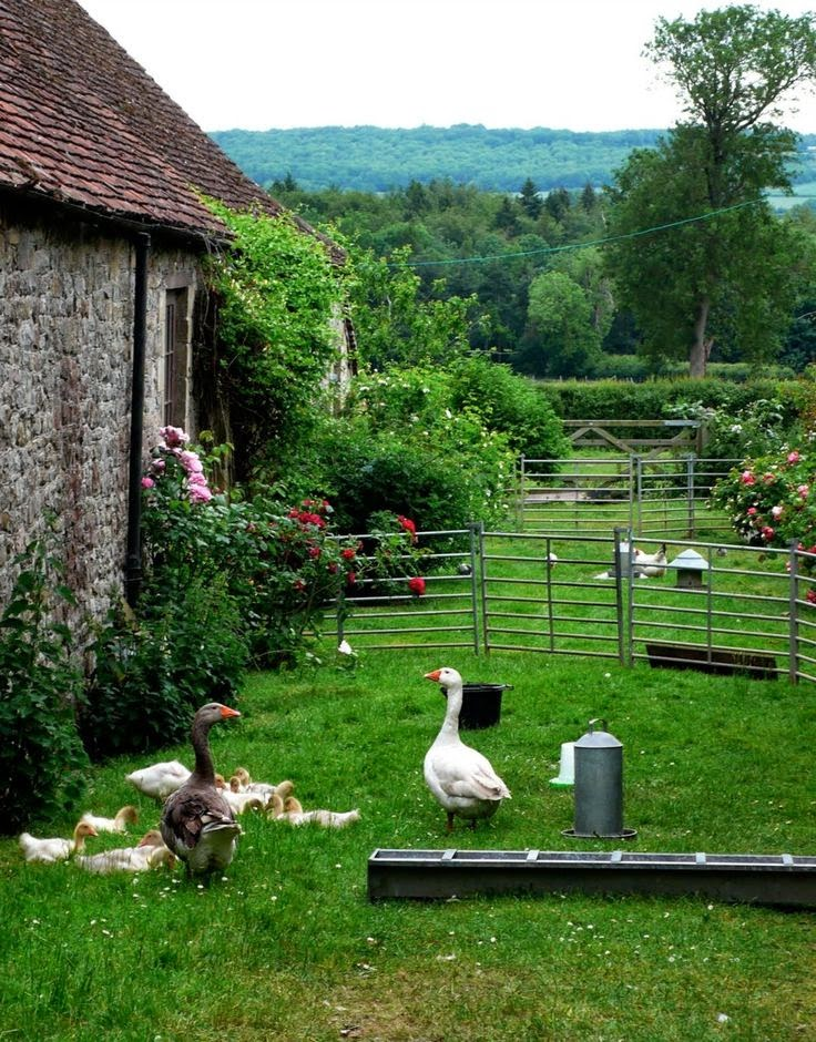 Home garden 40 inspirations pour un jardin anglais for Jardin in french