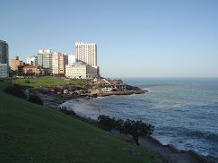 Punta Chica
