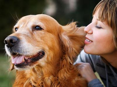 اكتشف شخصيتك من حيوانك المفضل - pets -girl woman and dog