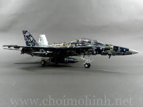 Máy bay mô hình tĩnh F/A-18F Super Hornet 100 Years Of Naval Aviation hiệu Witty Wings tỉ lệ 1:72