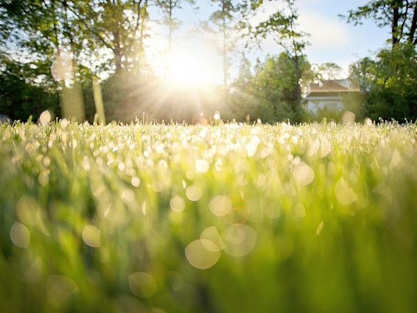 7 Effective Morning Rituals For A Healthier Body