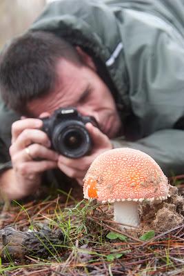 Video de la Asociación de Fotografía de Naturaleza Abejaruco para colaborar en el XXI Congreso Internacional de AEFONA