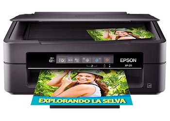 epson expression xp-211 drivers