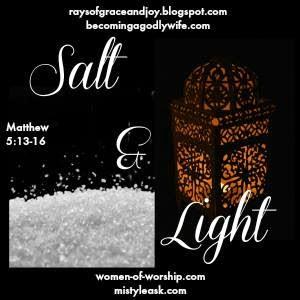 Salt & Light Link up  {Rays of Grace & Joy}