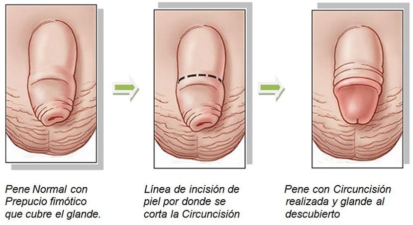 sexo oral prostitutas piruja significado mexico