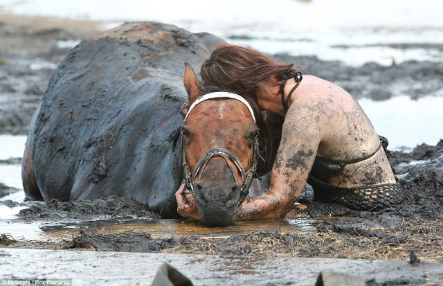 Woman and Horse Trapped in Mud