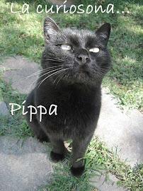 La Pippa