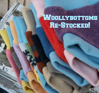 woollybottoms hybrid soakers