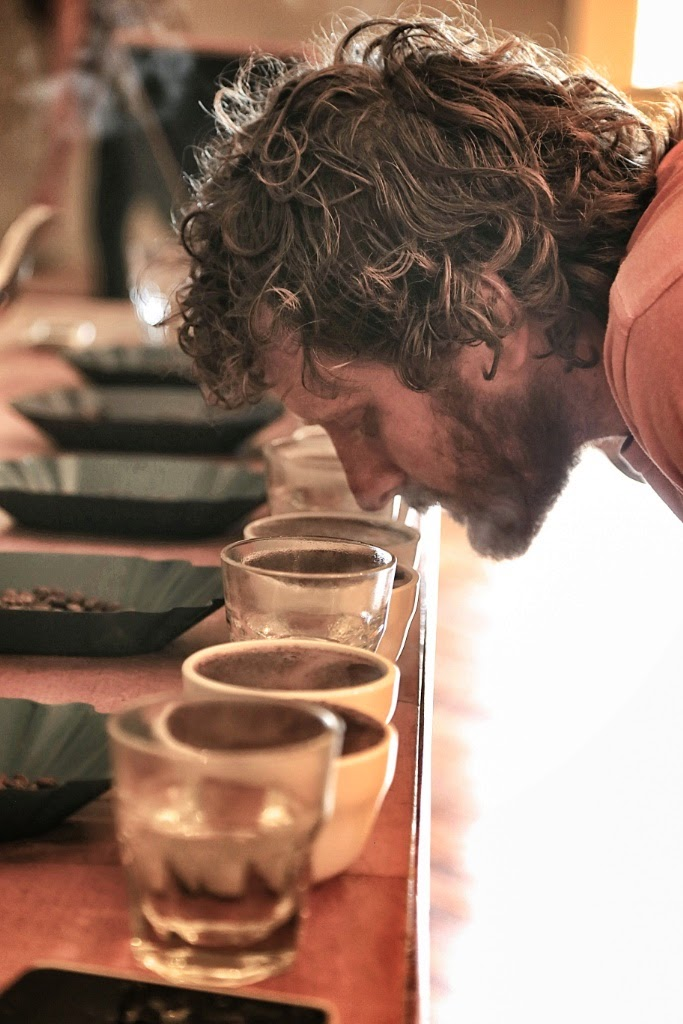 sniffing coffee, coffee cupping session, Stumptown coffee, Portland