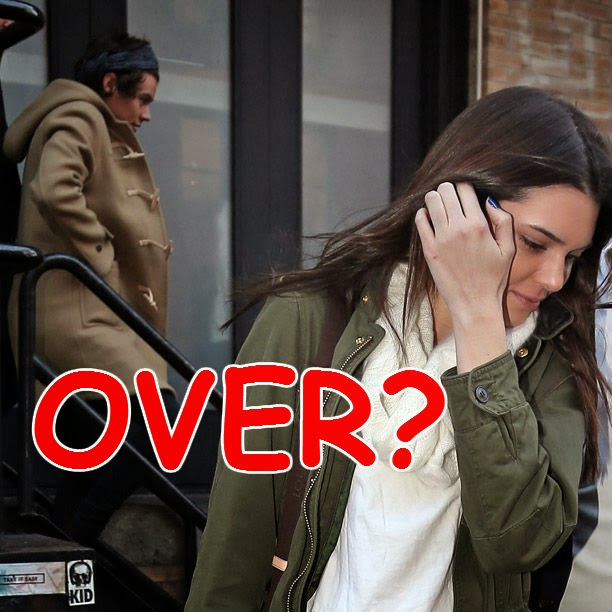 Harry Styles & Kendall Jenner Dating 2014 Wrap Up: A