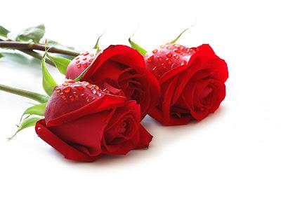 Bien-aimé Dachoula: Joyeux Anniversaire mon amour ! WO74