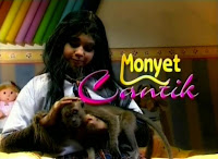 Sinopsis dan Pemain Sinetron Monyet Cantik