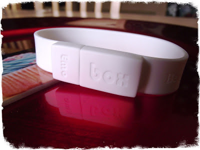 Emobox USB Wristband