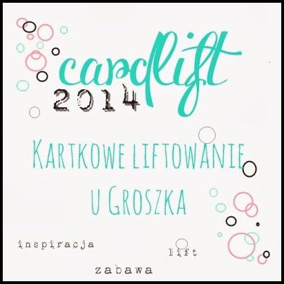 http://groszeknawrzosowisku.blogspot.com/2014/03/cardlift-2014-karola-witczak.html