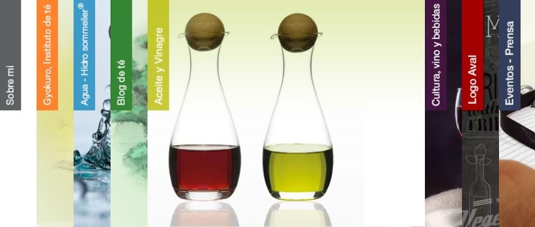 Aceite y Vinagre / Oil And Vinegar Blog