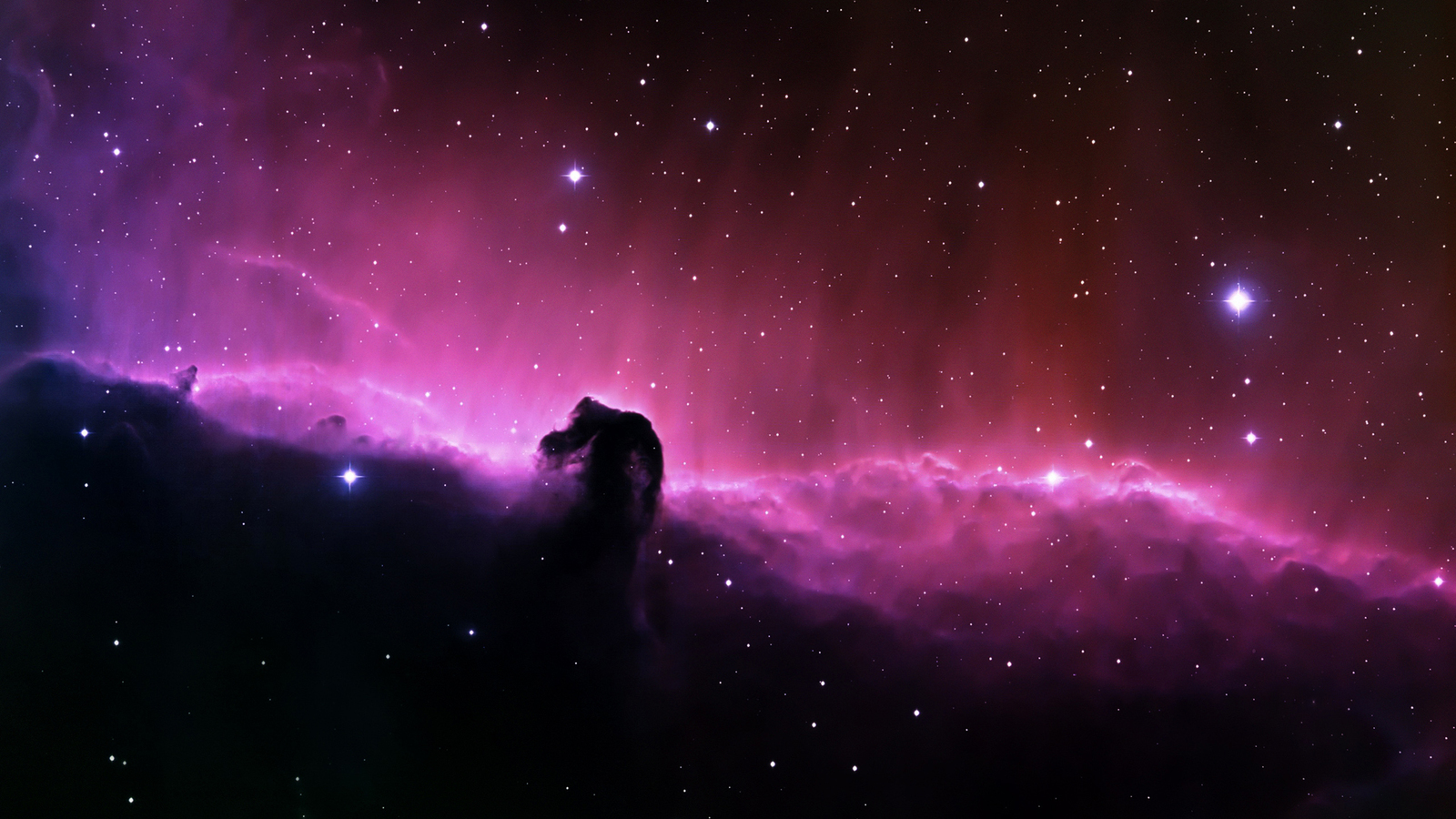 Most Inspiring   Wallpaper Horse Chromebook - freida-pinto-space-n-hd-horse-head-nebula-jpeg-1121842  2018_92773.jpg