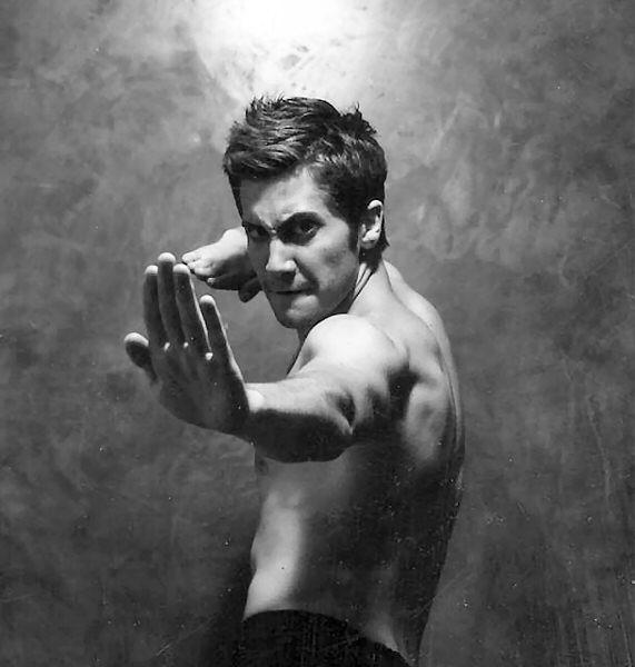 jake gyllenhaal  posters