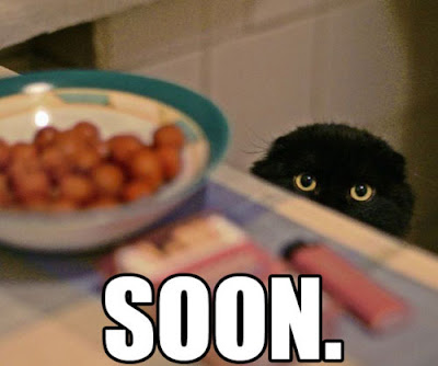 soon-cat-bowl.jpg
