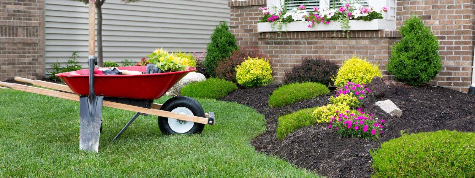Progettare un giardino 5 errori da evitare - Progettare un giardino ...
