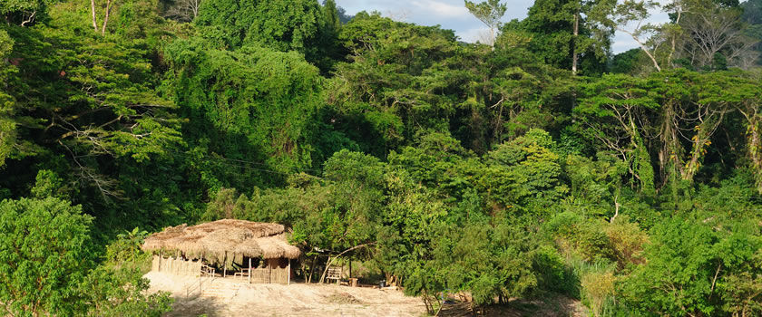 منتزه تامان نياجرا ماليزيا taman-negara-nationa