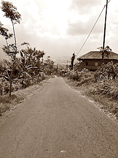 Jalanan Asing Panderman Jejak Manyar