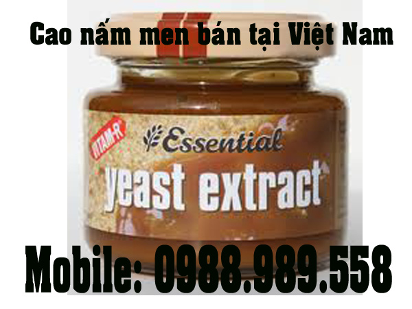 beef extract