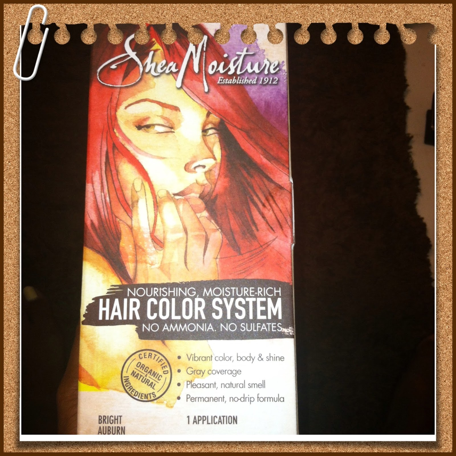 Glam Natural Life Empowering Women To Embrace Locs Natural Hair