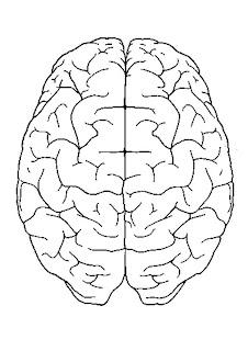 Todo sobre la epilepsia