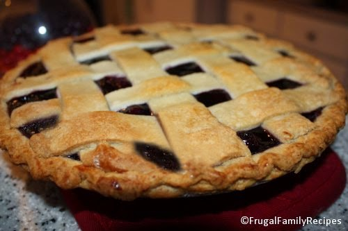 Homemade Blueberry Pie at FrugalFamilyRecipes