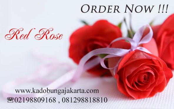 toko bunga mawar merah / red rose