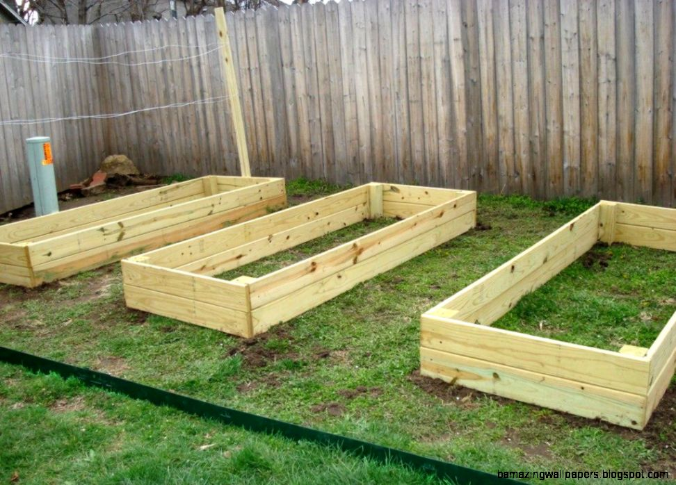 Building A Raised Vegetable Garden Box  The Garden Inspirations