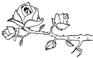 Desenho como desenhar Flores lindas    pintar e colorir