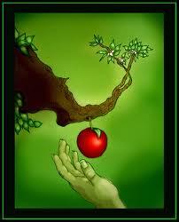 Kisah Nabi Adam dan Hawa Lengkap