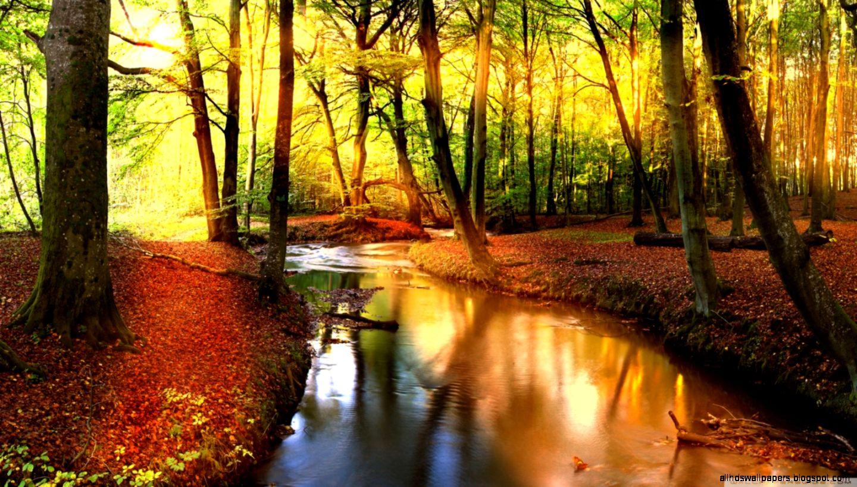Fall Definition: Landscape Fall Wallpaper Hd
