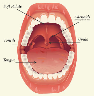 Remedies for Tonsil Problem - Tonsil ki samasya - Astro Uncle ke Upay