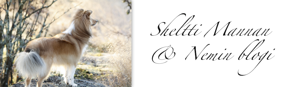 Sheltti Mannan ja Nemin blogi