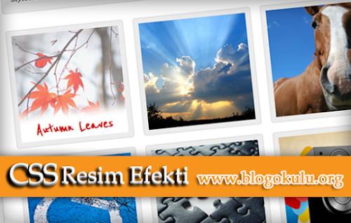 Blogger Resim Efekti ~ CSS image hover effect