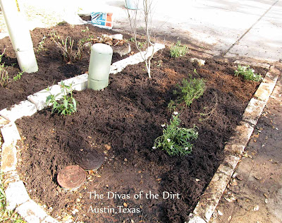 DivasoftheDirt,Drive bed replanted