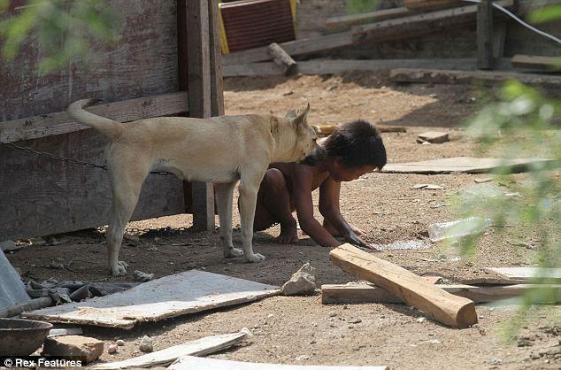 Budak dirantai bersama anjing