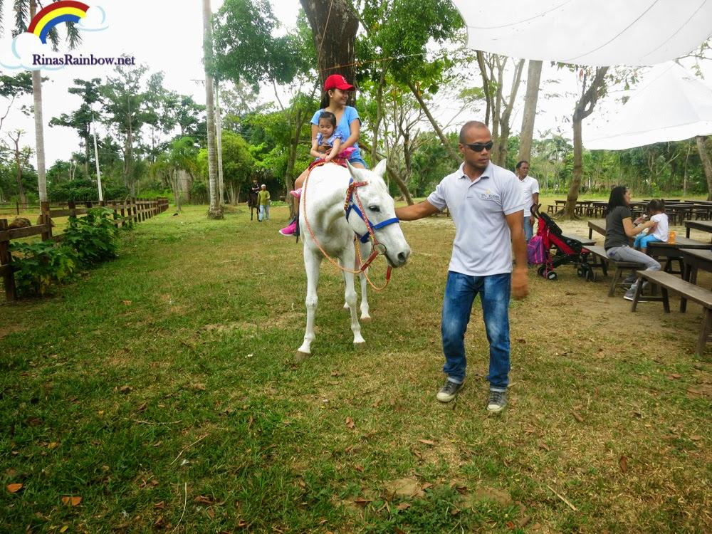 horseback riding fun farm