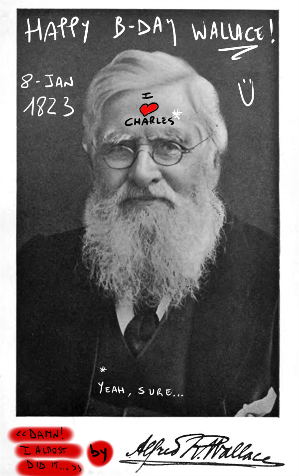 Happy b-day Alfred Russel Wallace! (by sciencemug)