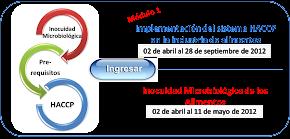 Diplomado HACCP on line