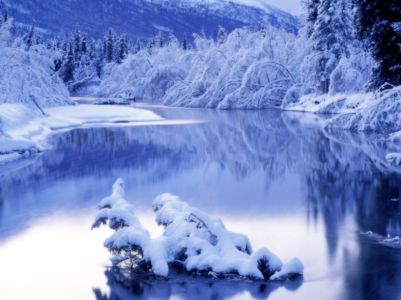 Top   Wallpaper Home Screen Winter - winter-wallpaper-5  Perfect Image Reference_46914.jpg
