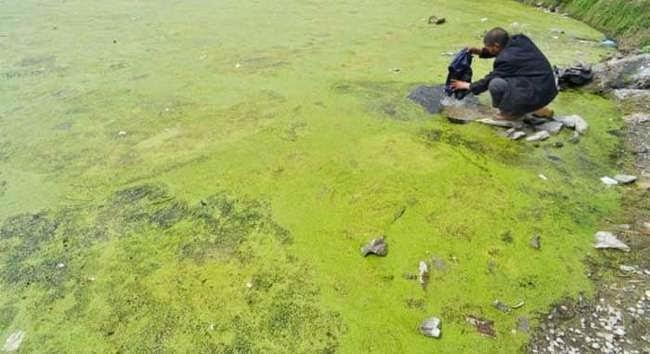 http://www.liataja.com/2015/04/foto-pencemaran-lingkungan-di-china.html