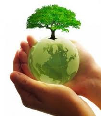 Keeping Our Earth Green