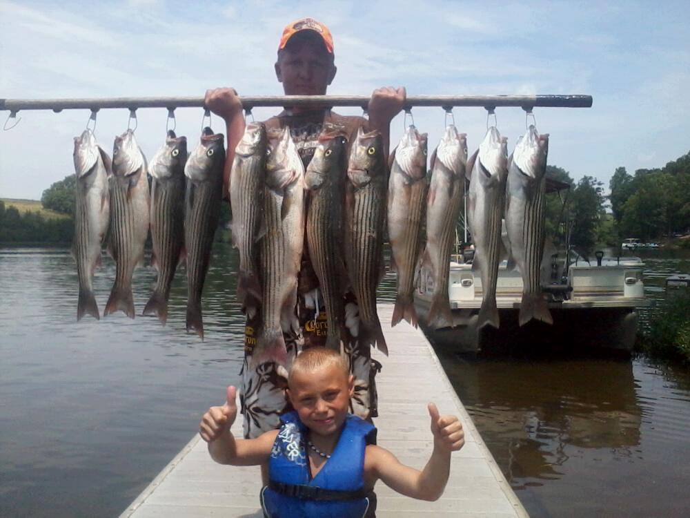 Striper report stripers anyone jim hemby guide service for Striper fishing report